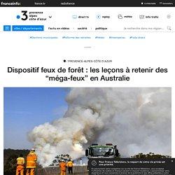 """Dispositif feux de forêt : les leçons à retenir des """"méga-feux"""" en Australie ..."""