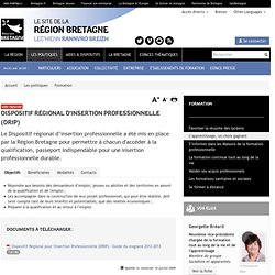 Dispositif Régional d'Insertion Professionnelle (DRIP)