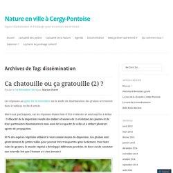Nature en ville à Cergy-Pontoise