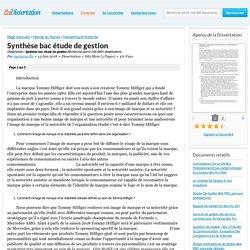 Synthèse bac étude de gestion - Dissertation - mariama785
