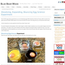 Dissolving, Expanding And Bouncing Egg Science Experiment