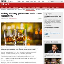 BBC 29/10/15 Whisky distillery grain waste could tackle radioactivity