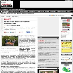 REUSSIR 17/05/10 Les distorsions de concurrence intra-communautaires