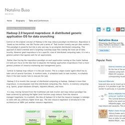 Natalino Busa: Hadoop 2.0 beyond mapreduce: A distributed generic application OS for data crunching