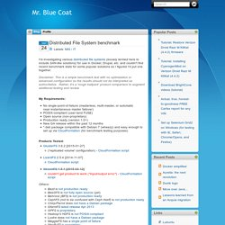 Mr. Blue Coat: Distributed File System benchmark