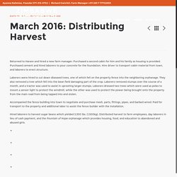 March 2016: Distributing Harvest – Zimbabwe Farm Project