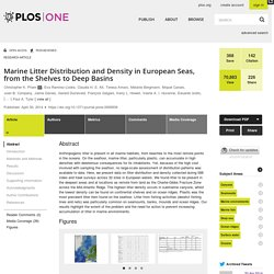 Marine Litter Distribution and Density in European Seas, from the Shelves to Deep Basins
