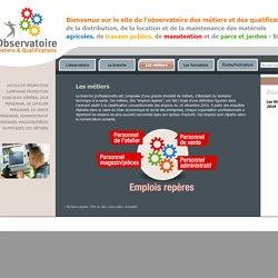 Métiers distribution, reparation, location matériel travaux publics, agricole, parcs et jardins - Observatoire SDLM