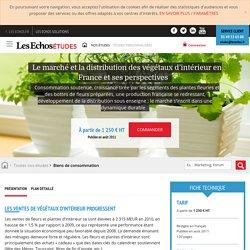 Le marché et la distribution des végétaux d'intérieur en France et ses perspectives