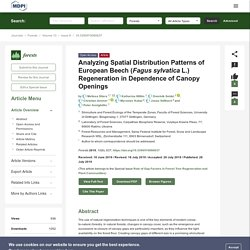 FORESTS 28/07/19 Analyzing Spatial Distribution Patterns of European Beech (Fagus sylvatica L.) Regeneration in Dependence of Canopy Openings