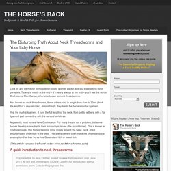The Disturbing Truth About Neck Threadworms and Your Itchy Horse - The Horse's Back