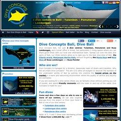 Dive Concepts Bali - Dive Bali