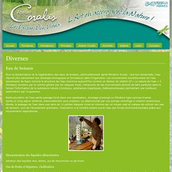 Diverses - Fontaine Coralis
