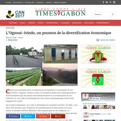 L'Ogooué-Ivindo, un poumon de la diversification économique - Times Gabon