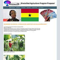 21st Century Diversified Agriculture Project for Ghana - Aloha Ecowas Development Corporation LTD