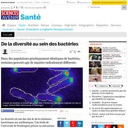 De la diversité au sein des bactéries