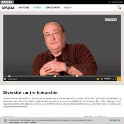 GOUYON Pierre Henri Diversité contre hiérarchie - Corpus - réseau Canopé