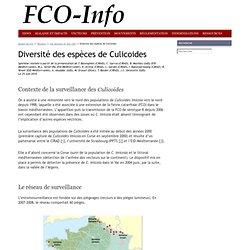 FCOINFO 25/06/10 Diversité des espèces de Culicoides