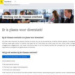 Werking van de Vlaamse overheid