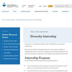 Diversity Internship