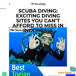 Scuba Diving: Exciting Diving Sites You Can't Afford to Miss in Indonesia