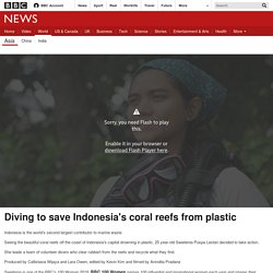Diving to save Indonesia's coral reefs from plastic