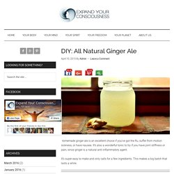 DIY: All Natural Ginger Ale