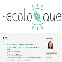 DIY pour adultes : ecoloquest