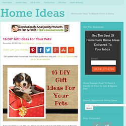 16 DIY Gift Ideas For Your Pets