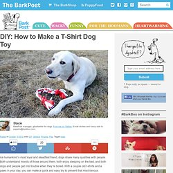 DIY: How to Make a T-Shirt Dog Toy