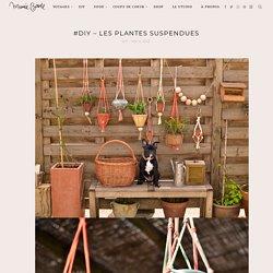 #DIY – Les plantes suspendues »