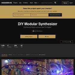 DIY Modular Synthesizer