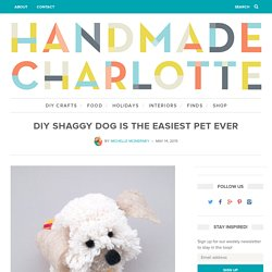 DIY Shaggy Dog Is The Easiest Pet Ever