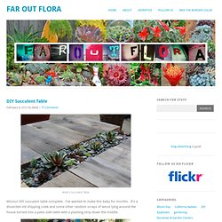 DIY Succulent Table « Far Out Flora's Blog