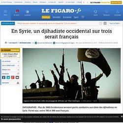 En Syrie, un djihadiste occidental sur trois serait français