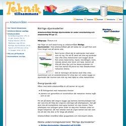 Rörliga djurmodeller - Arbetsområden - Teknik tillsammans - CETIS