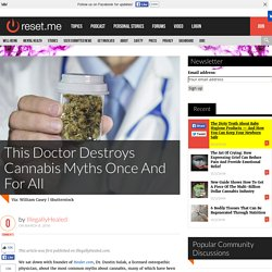 This Doctor Destroys Cannabis Myths Once And For All