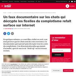 Un faux documentaire sur les chats qui décrypte les ficelles du complotisme refait surface sur internet
