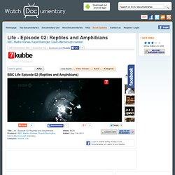 Life - Episode 02: Reptiles and Amphibians - Watch Free Documentary Online - BBC, Martha Holmes, Rupert Barrington, David Attenborough (narrator)