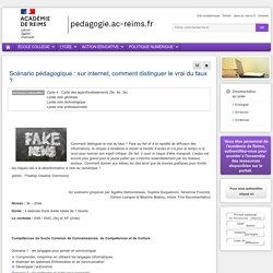 Se former Documentation lycée - Scénario pédagogique : sur internet, comment distinguer le vrai du faux ?