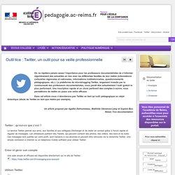 Se former Documentation lycée - Outil tice : Twitter, un outil pour sa veille professionnelle