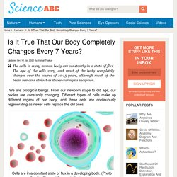 true-body-completely-changes-every-7-years