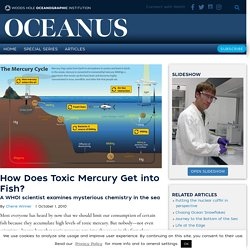 How Does Toxic Mercury Get into Fish?