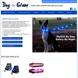 Lighted LED Dog Collars & Dog Leashes for Dog Safety at Night from Dogeglow