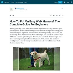 How To Put On Easy Walk Harness? The Complete Guide For Beginners : dogexpressusa — LiveJournal