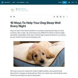 10 Ways To Help Your Dog Sleep Well Every Night : dogexpressusa — LiveJournal