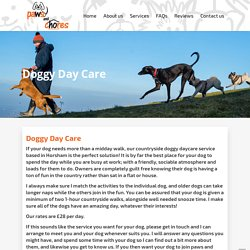 Doggy Day Care Cost in Horsham