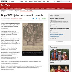 Dogs' WW1 jobs uncovered in records