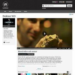 Doktor NO: Bland ödlor och ormar