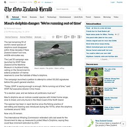 Maui's dolphin danger: 'We're running out of time'